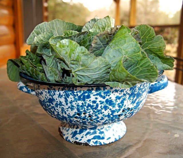 Collard Greens for thanksgiving and Christmas